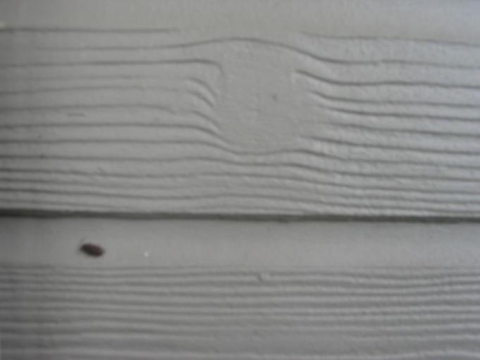 Hardboard Lap Siding ~ Masonite siding bing images